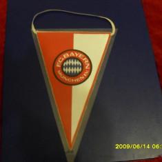 Fanion     F.C.  Bayern  Munchen