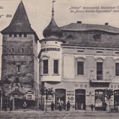 CRISANA, BIHOR, SALONTA, MUZEUL ARANY, CIRCULARTA JUL.*925 - Carte Postala Crisana 1904-1918, Circulata, Printata