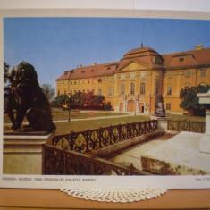 FOTOGRAFIE - ORADEA- MUZEUL TARII CRISURILOR ( PALATUL BAROC )- FORMAT 26/19, 5cm - Carte Postala Crisana dupa 1918, Necirculata