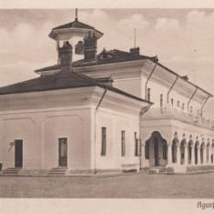 BRAILA, AGENTIA NAVIGATIA FLUVIALA ROMANA - Carte Postala Muntenia dupa 1918, Necirculata, Printata