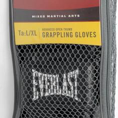 Everlast - manusi MMA de antrenament - marimea L/XL - Manusi box