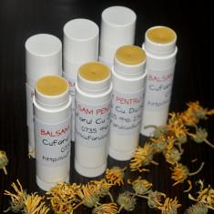 Balsam de buze natural cu ulei de catina
