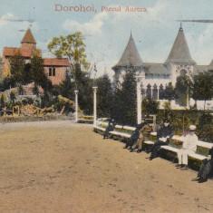 DOROHOI  PARCUL  AURORA  CIRCULATA 1916