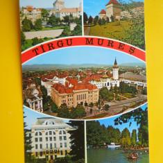 HOPCT 16924 TARGU MURES - -JUD MURES - [NECIRCULATA] - Carte Postala Transilvania dupa 1918, Printata