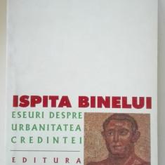 Ispita binelui. Eseuri despre urbanitatea credintei Teodor Baconsky - Carti Crestinism