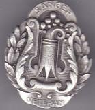 Insigna  Veteran Sanger