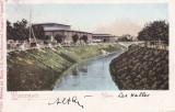BUCURESTI , HALELE ,  CLASICA , CIRCULATA 1905, Printata