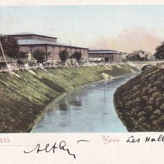 BUCURESTI, HALELE, CLASICA, CIRCULATA 1905 - Carte Postala Muntenia pana la 1904, Printata