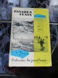 Pasarea Fenix  - Ion Grigorescu