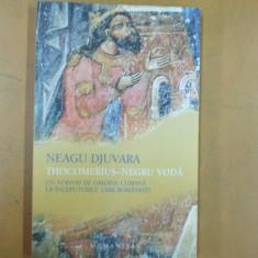 Neagu Djuvara Thocomerius Negru Voda voivod origine cumana Bucuresti 2007 - Istorie