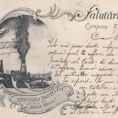 CAMPINA SALUTARI DIN CAMPINA ERUPTIUNEA SONDEI 23/26 IUL. '901''STEAUA ROMANA'' - Carte Postala Muntenia pana la 1904, Circulata, Printata