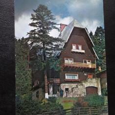 SEPT15- Vedere/Carte postala - Sinaia - Vila Albina - Carte Postala Banat dupa 1918, Circulata, Printata