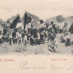 SALUTARI DIN ROMANIA, SATRA DE TIGANI, CIRCULATA JUL.''901 - Carte postala tematica, Printata
