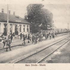 BRASOV, SACELE, GARA DARSTE - SACELE, TREN - Carte Postala Transilvania 1904-1918, Necirculata, Printata