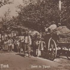 VEDERE DE LA TARA, SATRA DE TIGANI - Carte postala tematica, Necirculata, Printata