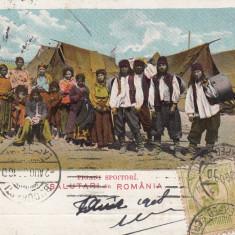 SALUTARI DIN ROMANIA, TIGANI SPOITORI, CIRCULATA AUG.''08 - Carte postala tematica, Printata