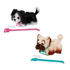 Pet Parade - Pug Cu Border Collie