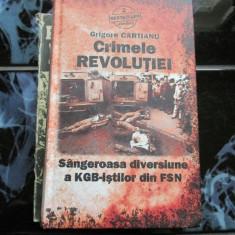 Crimele revolutiei - Sangeroasa diversiune a KGb-isitilor din FSN - Istorie