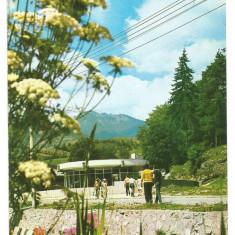 @carte postala(ilustrata)-BISTRITA NASAUD-Saigeorz Bai-Izvoarele de apa minerala - Carte Postala Transilvania dupa 1918, Necirculata, Printata