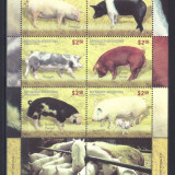 ARGENTINA 2011, Fauna -Rase de Porci, serie neuzata, MNH - Timbre straine, Nestampilat