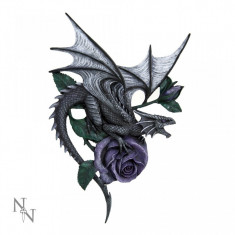 Plachetă decorativă pentru perete Dragon Beauty