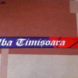 elba timisoara banat fular sport hobby castigatoarea cupei romaniei baschet 2010