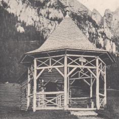 BUSTENI, CHIOSCUL CANTACUZINO, CLASICA, CIRCULATA 1905 - Carte Postala Muntenia dupa 1918, Printata