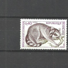 Franta 1973 - ANIMALE SALBATICE, RATON, timbru nestampilat AD101 - Timbre straine