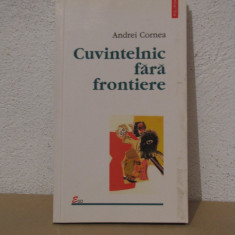 CUVINTELNIC FARA FRONTIERE-ANDREI CORNEA