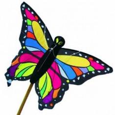 Zmeu zburator in forma de fluture, Brookite