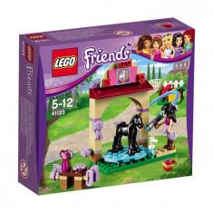 Lego Friends Ingrijirea Mã¢Nzului L41123