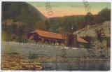 1923 - Valcea, CACIULATA - old postcard - unused, Necirculata, Printata
