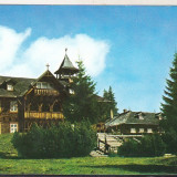 Bnk cp Paltinis - Vedere - necirculata - Carte Postala Transilvania dupa 1918, Printata