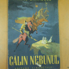 Mihail Eminescu Calin nebunul 10 ilustratii Perahim - Carte Basme