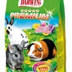 Darwin Premium - hrana completa pentru porcusori de guineea, iepuri si chinchile - Hrana pasare si rozatoare