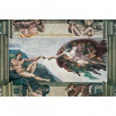 Puzzle Michelangelo - Crearea lui Adam, 5000 piese Ravensburger