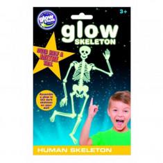 Schelet uman fosforescent The Original Glowstars Company