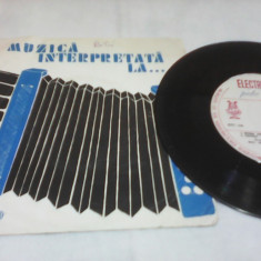 DISC VINIL TARAFUL FRATILOR GORE HORA DE LA BRAILA VICTOR GORE RAR!!EPC 530 - Muzica Lautareasca