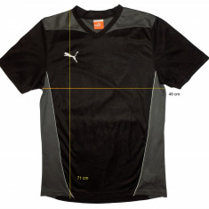 Tricou sport PUMA tehnologie Dry Cell (M) cod-172081 - Set echipament fotbal Puma, Marime: M