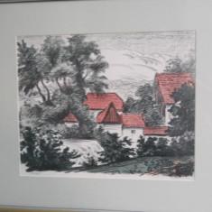 Fred Micos-Case din Saliste,litografie color/hartie,semnata,28,5x35cm.