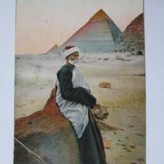 RARITATE! CARTE POSTALA PUBLICITARA CARAVANA EGIPTEANA ARENELE ROMANE 1911, Necirculata, Printata, Africa