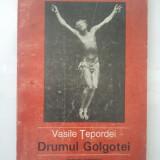 DRUMUL GOLGOTEI - VASILE TEPORDEI ( 4852 ) - Roman, Anul publicarii: 1995