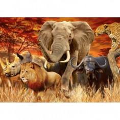 Puzzle Cele cinci mari animale, 1000 piese Ravensburger