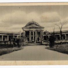 ORADEA GOLGOTA - Carte Postala Crisana dupa 1918, Necirculata, Printata