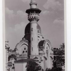 CONSTANTA MOSCHEIA - Carte Postala Dobrogea dupa 1918, Necirculata, Fotografie