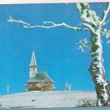 Bnk cp Iarna in Semenic - Vedere - necirculata - Carte Postala Banat dupa 1918, Printata