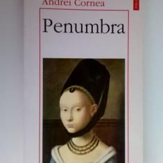 Andrei Cornea - Penumbra - Filosofie