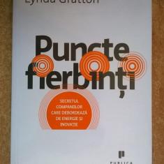 Lynda Gratton - Puncte fierbinti