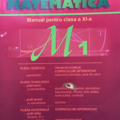 MATEMATICA MANUAL PENTRU CLASA A XI-A M1 - Burtea, Clasa 11, Carminis