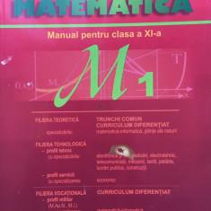 MATEMATICA MANUAL PENTRU CLASA A XI-A M1 - Burtea - Manual scolar, Clasa 11, Carminis